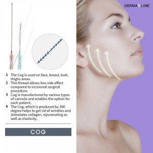 Derma V Line lifting threads COG type Korea